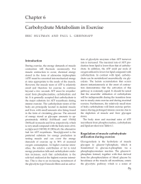 Carbohydrate Metabolism in Exercise