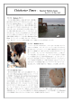 Special Tokiwa Issue - Documents