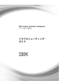 IBM Cognos Business Intelligence